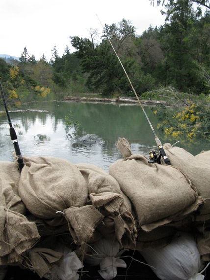 Fishing poles on sandbags at Dobbyn Creek home